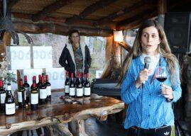 Los Pinot Noir de Aniello subieron a la montaña